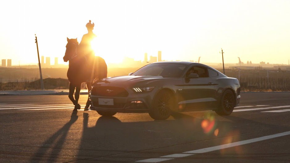 Ford Mustang Year of the Horse Ordos Vaughn Gittin Jr. Drift Qualm Sonnenuntergang Pferd Silhouette Muscle Car Power