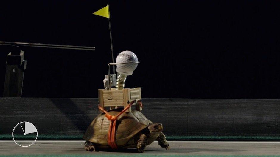 Bob Partington baut die langsamste Rube Goldberg Machine der Welt
