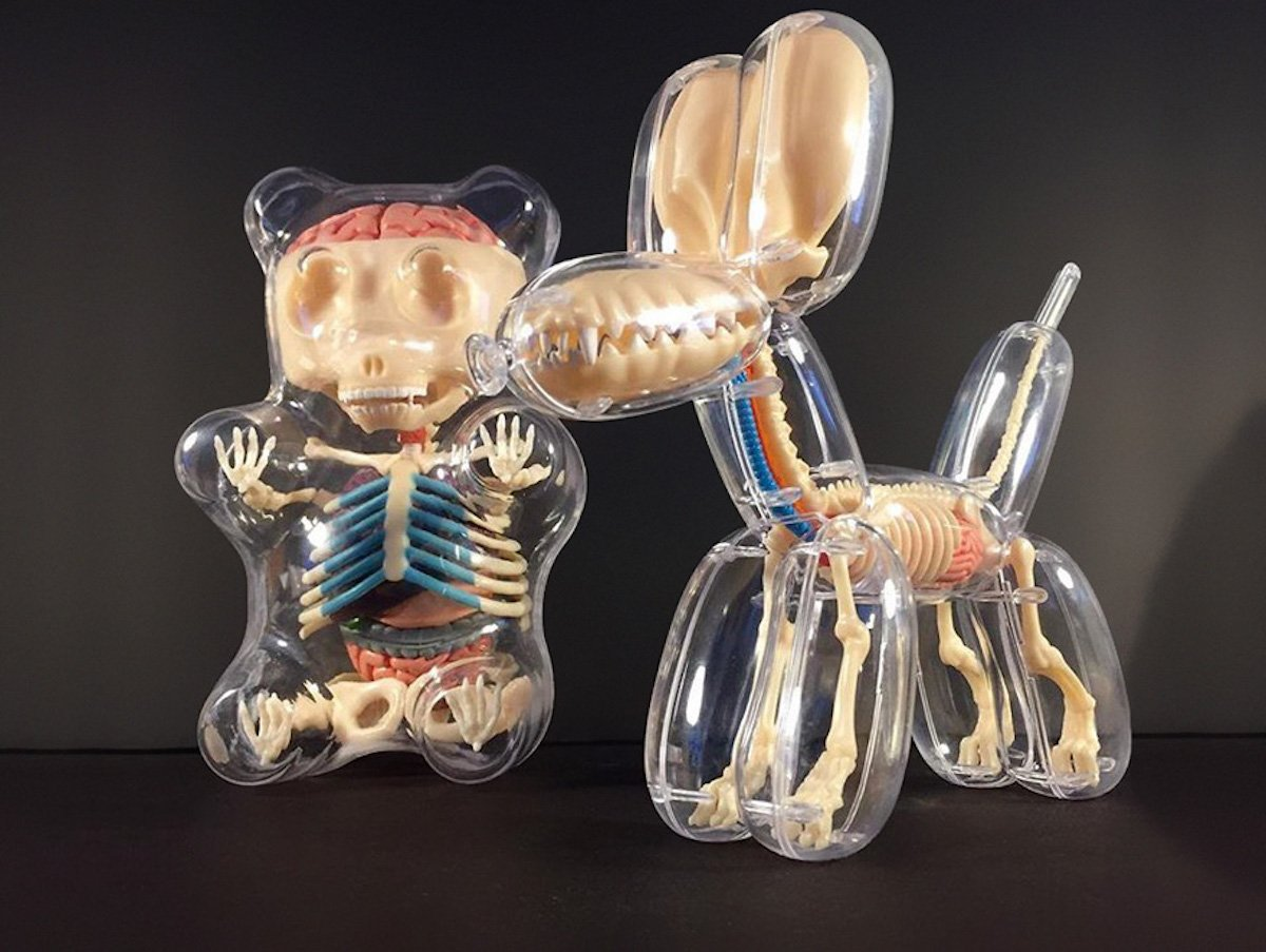 Anatomical Balloon Animals Jason Freeny Luftballontiere Clown Magier Toys Spielzeug Anatomie