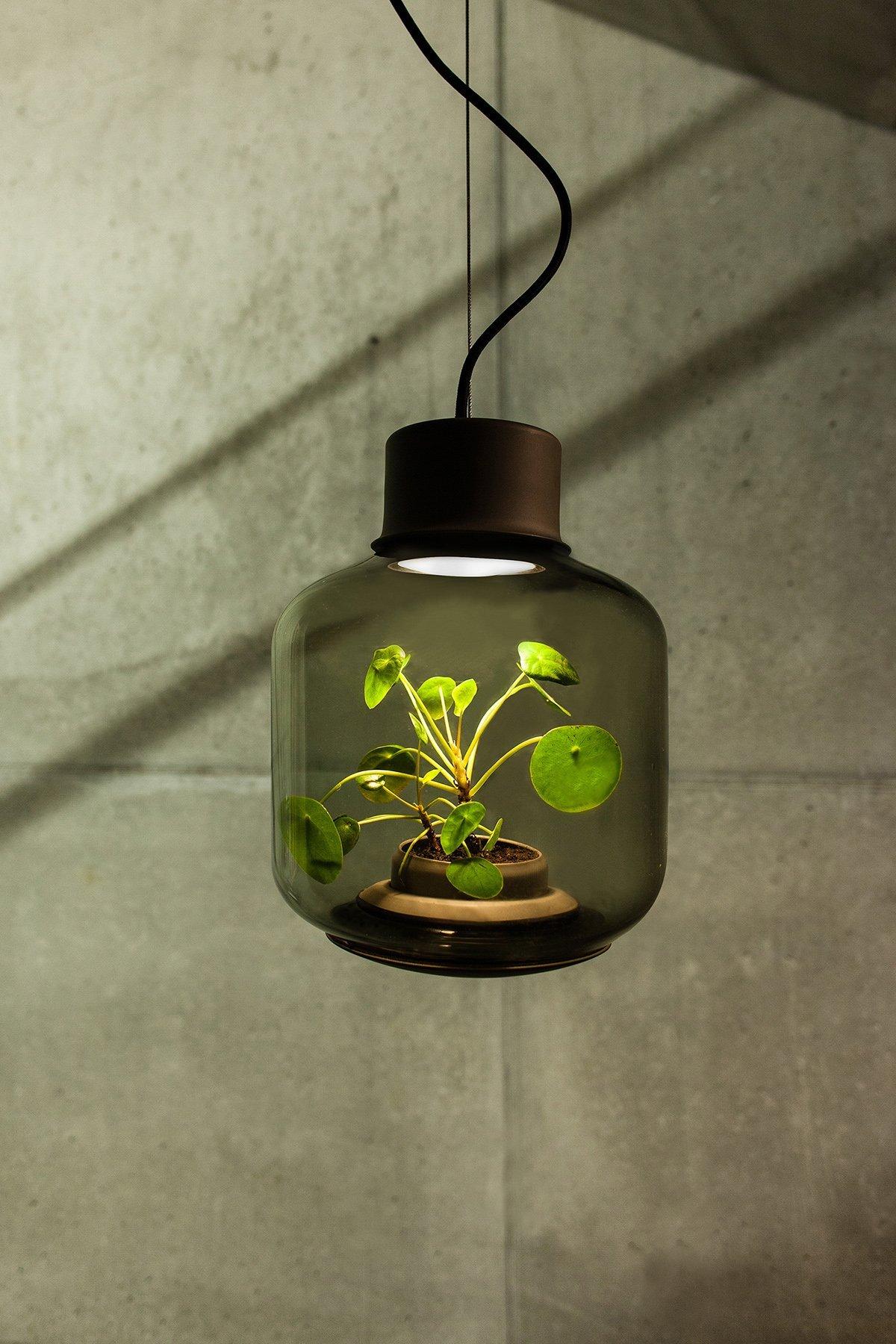 mygdal-plantlamp-hanging