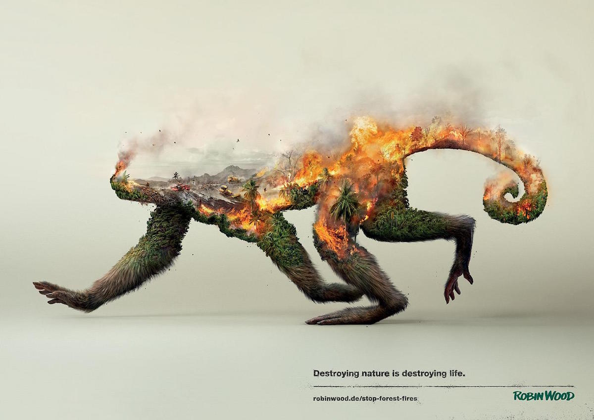 Robin Wood Regenwald Affe Kampagne Poster Naturschutz Waldbrand Destroying nature is destroying life