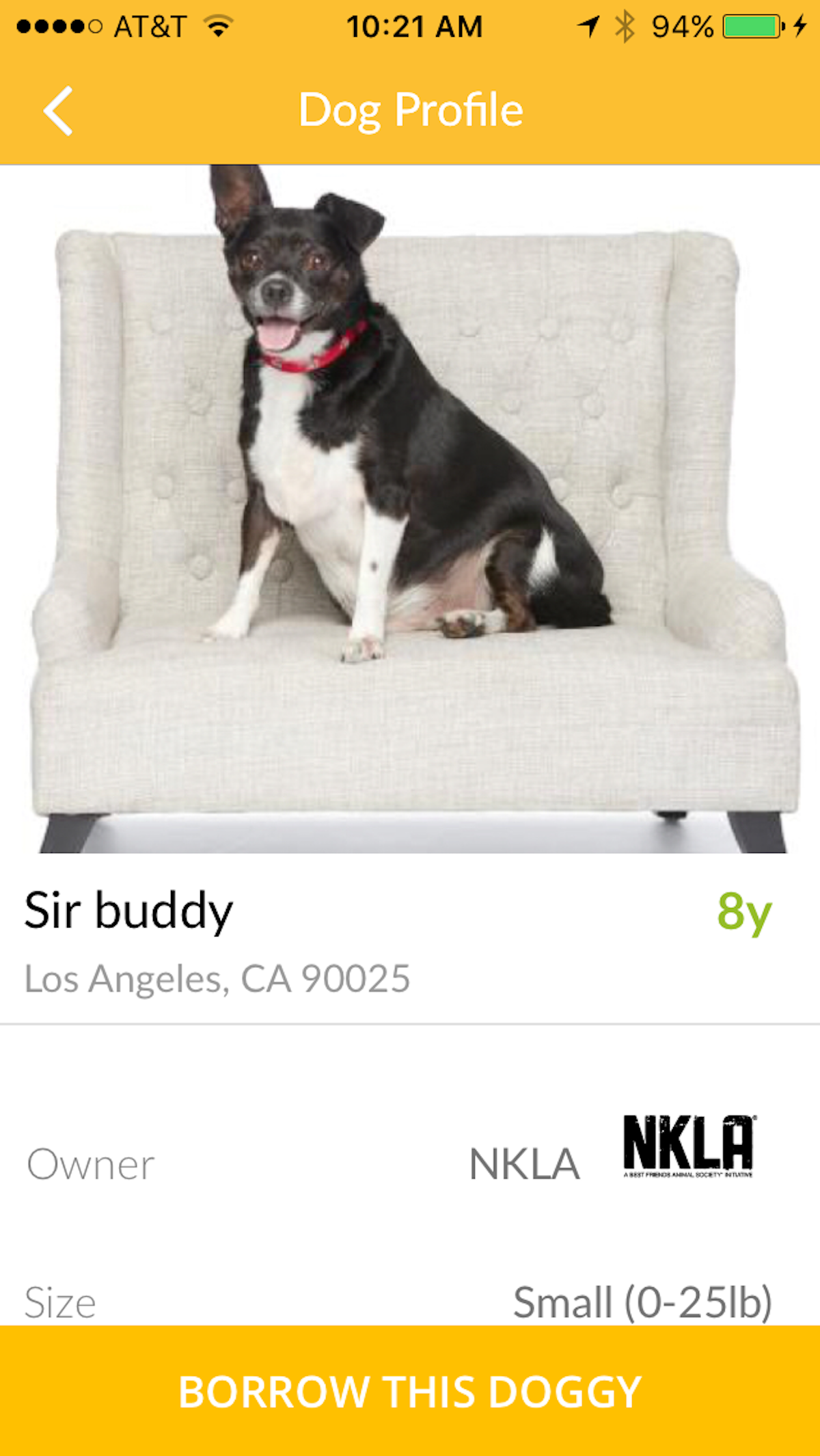Bark-N-Borrow-sir-buddy