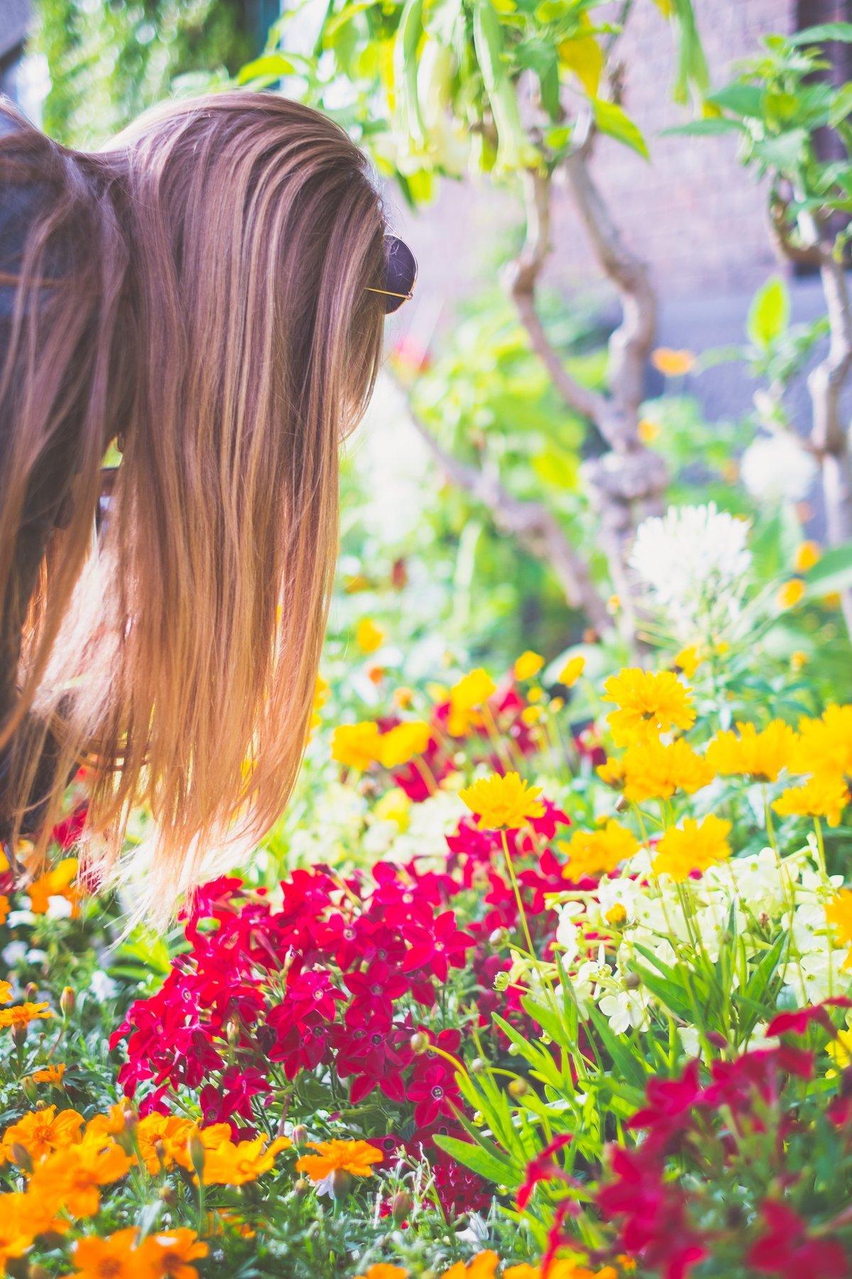 Kopenhagen Rathaus Blumenbeete Pflanzen Exotisch Diana MANCVE Blond Haare Gegenlicht Spitzen Blüten Aufblühen Sommer Grün Vegetation
