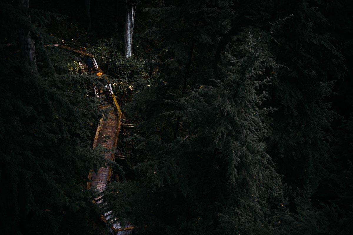 Capilano Suspension Bridge Park Walk Forest Wald Douglasfichten Nature Hike Wandern Treppen Stufen Geländer Touristen Kanada Vancouver