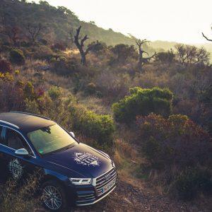 Audi SQ5 Steppe