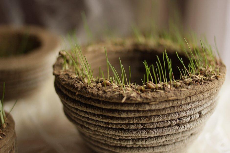 printGREEN Blumentopf Pflanzen 3D Drucker Natur