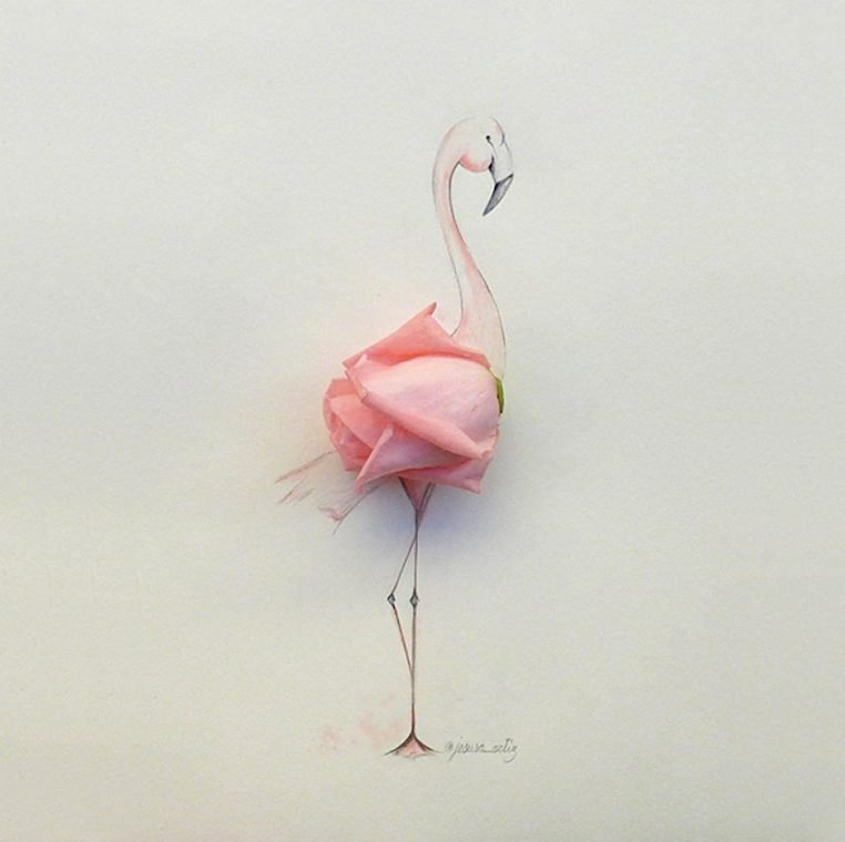 Jesuso Ortiz Illustration Flamingo Fotografie Kunst Art Rose Papier Zeichnung