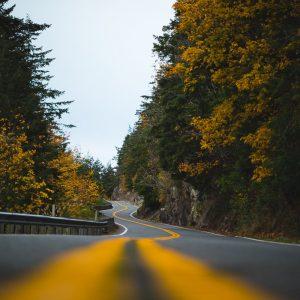 Carl Zeiss Milvus 85mm f/1.4 Canon EOS 5D Mark IV Mount Pleasant Country Road Roadtrip Indian Summer Mittelstreifen gelb USA Kanada Wallpaper Schärfe Blende f1.4