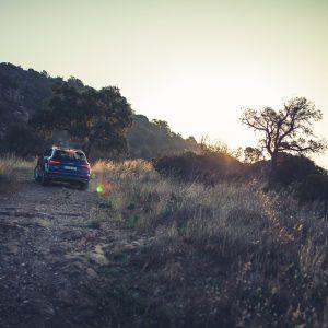 Audi SQ5 Südafrika Landschaft