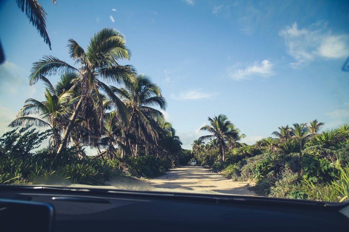 Sian Ka'an Straße zwischen Palmen