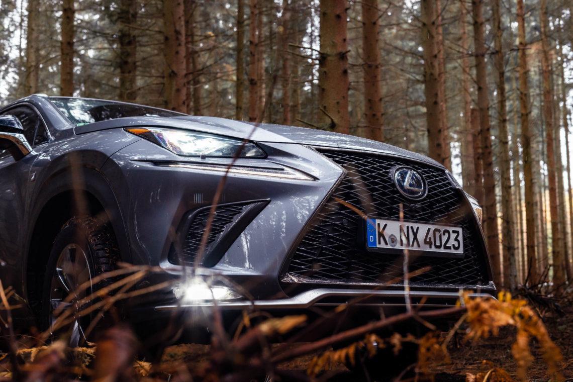 Lexus NX Diablo Wabengrill in der Natur