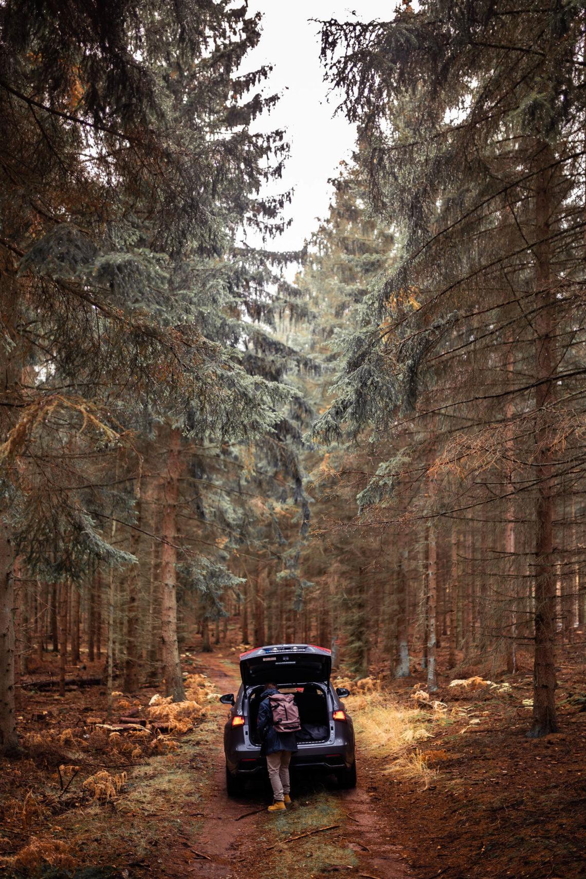 Waldweg mit Lexus NX und Mann mit Rucksack