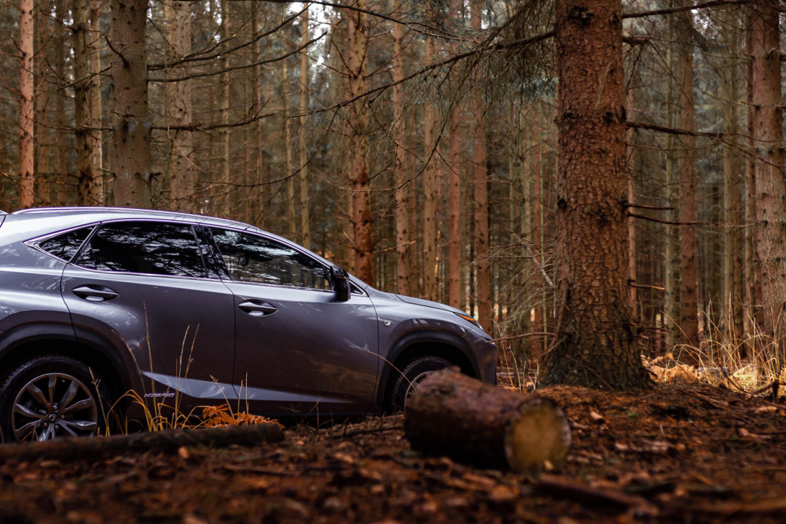 Seitenansicht Lexus NX Hybrid im Wald