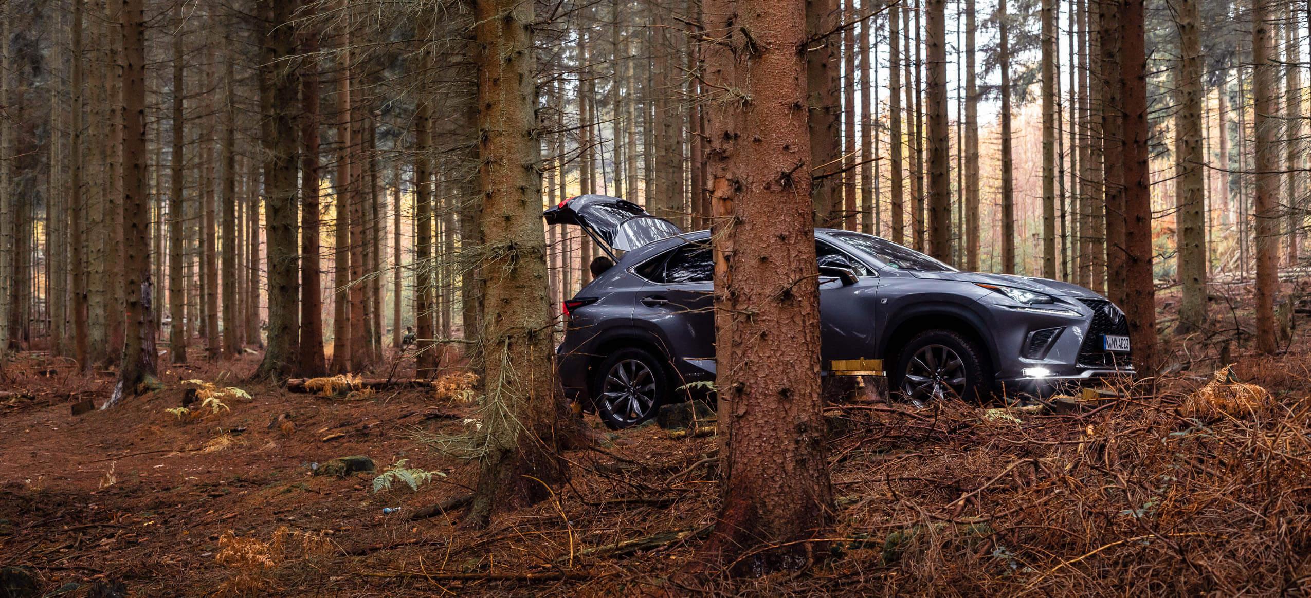 Lexus NX 300h F-Sport Wald